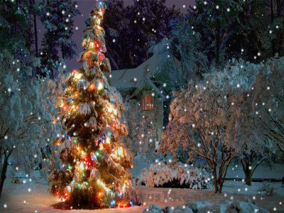 Christmas serenity screensaver 2 2 free download - Anime screensaver windows 10 ...
